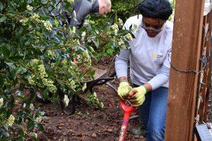 Two staff members digging holes
